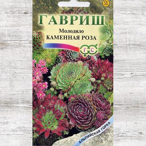 Молодило Каменная Роза, смесь окрасок Гавриш изображение 1 артикул 71102