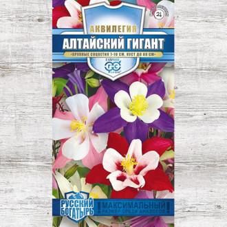 Аквилегия Алтайский гигант, смесь окрасок Гавриш изображение 3