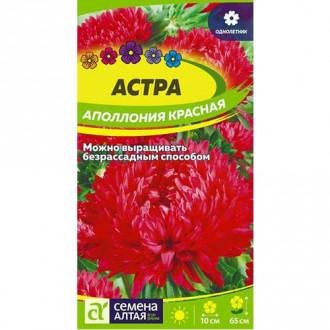 Астра Аполлония красная Семена Алтая изображение 5