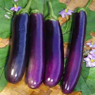 Баклажан Длинный фиолетовый Седек изображение 4