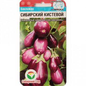 Баклажан Сибирский кистевой Сибирский сад изображение 8