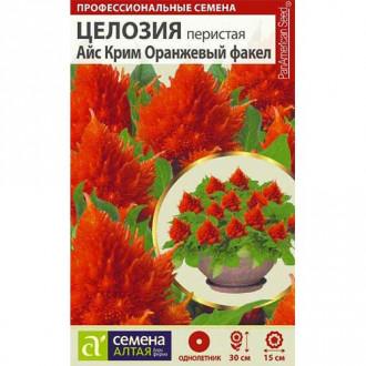 Целозия перистая Айс Крим Оранжевый факел Семена Алтая изображение 2