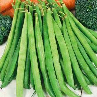 Фасоль спаржевая Купчиха Premium Seeds изображение 3
