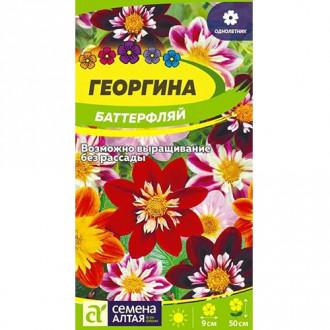Георгина Баттерфляй, смесь окрасок Семена Алтая изображение 5