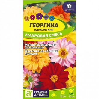 Георгина Махровая, смесь окрасок Семена Алтая изображение 2