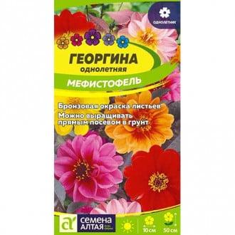 Георгина Мефистофель, смесь окрасок Семена Алтая изображение 3