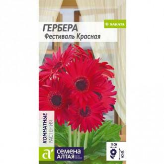 Гербера Фестиваль красная Семена Алтая изображение 3
