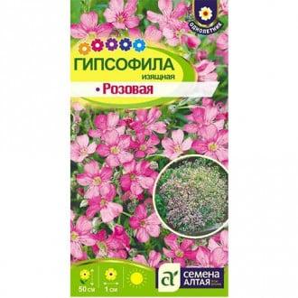 Гипсофила изящная розовая Семена Алтая изображение 5