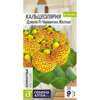 Кальцеолярия Дэинти Черевички желтые F1 Семена Алтая изображение 2