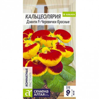 Кальцеолярия Дэинти Черевички красные F1 Семена Алтая изображение 1
