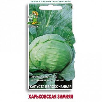 Капуста белокочанная Харьковская зимняя Поиск изображение 4