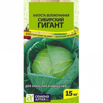 Капуста белокочанная Сибирский гигант Семена Алтая изображение 2