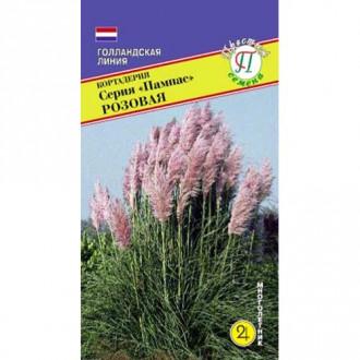 Кортадерия (пампасная трава) розовая Престиж изображение 1