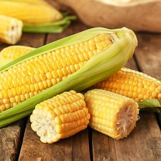 Кукуруза медовая Premium Seeds изображение 5