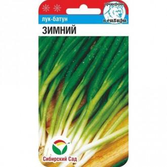 Лук батун Зимний Сибирский сад изображение 5