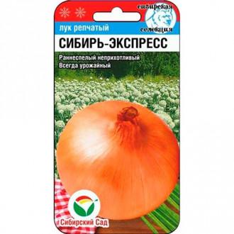 Лук репчатый Сибирь-экспресс Сибирский сад изображение 4