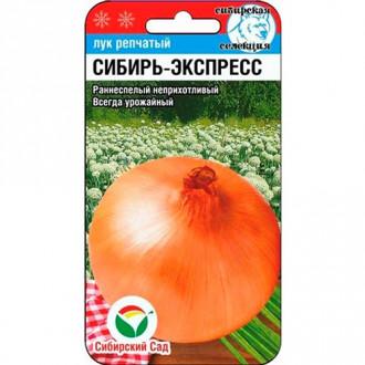Лук репчатый Сибиряк Сибирский сад изображение 8