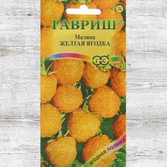 Малина Желтая ягодка Гавриш изображение 4