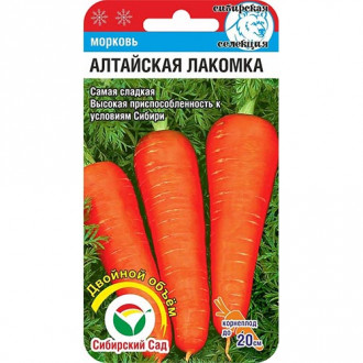 Морковь Алтайская лакомка Сибирский сад изображение 4