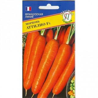 Морковь Аттилио Престиж изображение 8