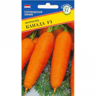 Морковь Канада F1 Престиж изображение 3