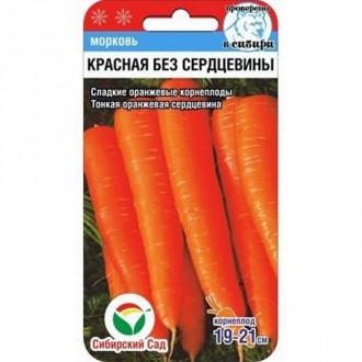 Морковь Красная без сердцевины Сибирский сад изображение 4