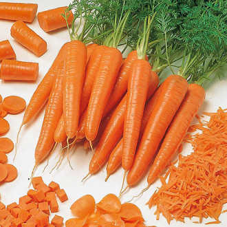 Морковь Семеновна F1 Premium Seeds изображение 7