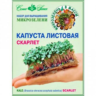 Набор Капуста листовая Скарлет Семко изображение 8