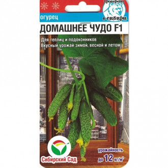 Огурец Домашнее чудо F1 Сибирский сад изображение 7