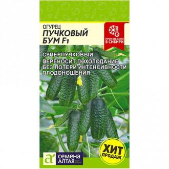 Огурец Пучковый бум F1 Семена Алтая изображение 2