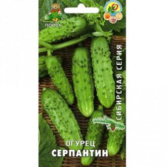Огурец Серпантин Поиск изображение 5
