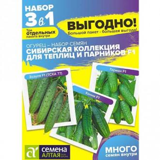 Огурец Сибирская коллекция Для теплиц и парников F1, смесь сортов Семена Алтая изображение 1