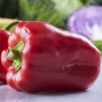 Перец сладкий Красный подснежник F1 Premium Seeds изображение 5