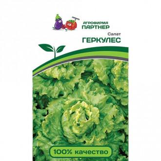Салат листовой Геркулес Партнер изображение 7