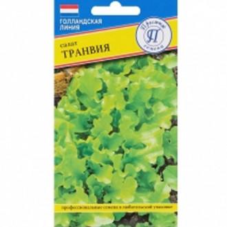 Салат листовой Транвия Престиж изображение 6