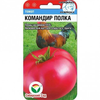 Томат Командир полка Сибирский сад изображение 2