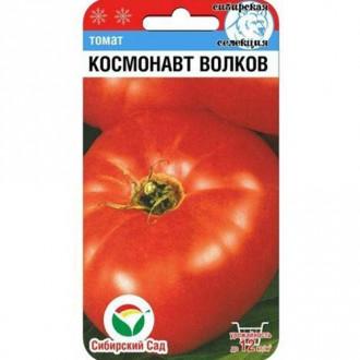 Томат Космонавт Волков Сибирский сад изображение 7