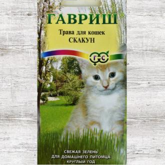 Трава для кошек Скакун Гавриш изображение 4