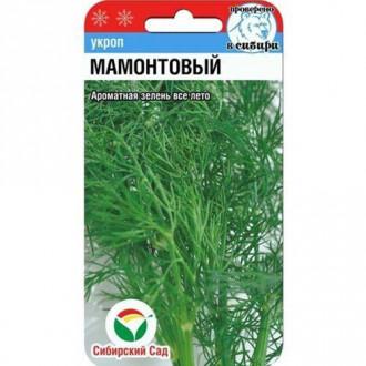 Укроп Мамонтовый Сибирский сад изображение 3