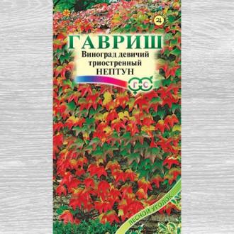 Виноград девичий триостренный Нептун Гавриш изображение 1