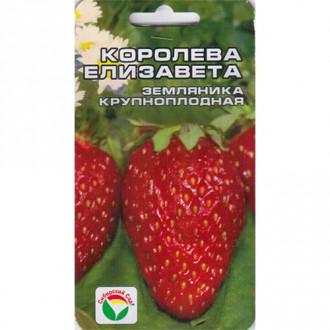 Земляника крупноплодная Королева Елизавета Сибирский сад изображение 3
