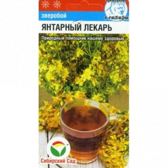 Зверобой Янтарный лекарь Сибирский сад изображение 1
