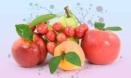 Плодовый шоппинг | Bekker.kz