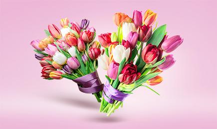 ШОУ тюльпанов! | Bekker.kz