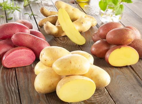 Каталог - Семенной картофель - Bekker.kz Казахстан